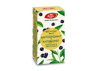 Antioxidant + Antiaging, M117   60cps