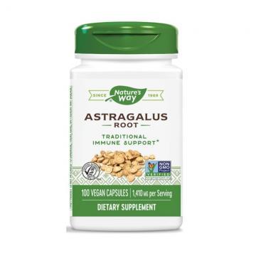 Astragalus Root, 100 capsule, Secom