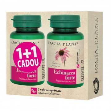 Echinacea Forte 60cpr