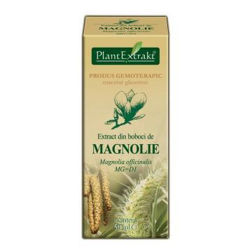Extract Din Boboci De Magnolie 50 ml