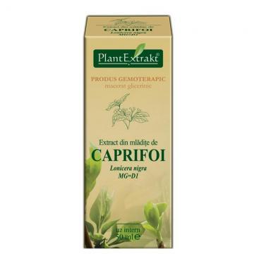 Extract Din Mlădiţe De Caprifoi Negru 50 ml