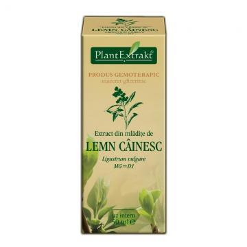 Extract Din Mlădiţe De Lemn Cainesc 50 ml