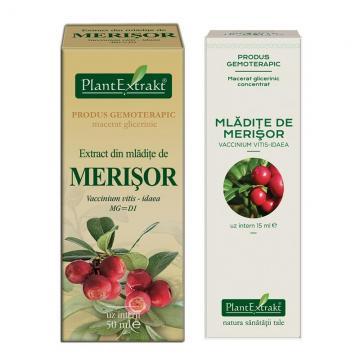 Extract Din Mlădiţe de Merisor 50 ml