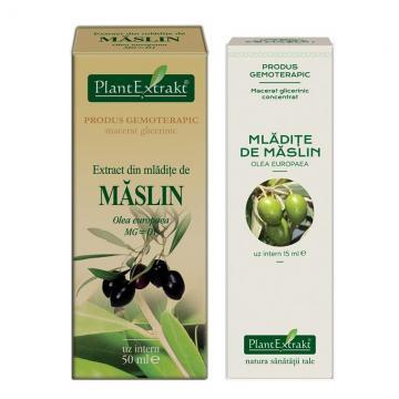 Extract Din Mlădiţe De Maslin 50 ml