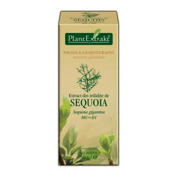 Extract Din Mlădiţe De Sequoia 50 ml