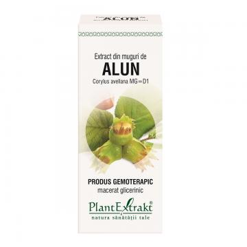 Extract Din Muguri De Alun 50 ml