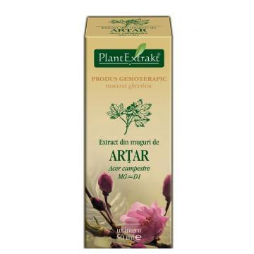 Extract Din Muguri De Artar 50 ml