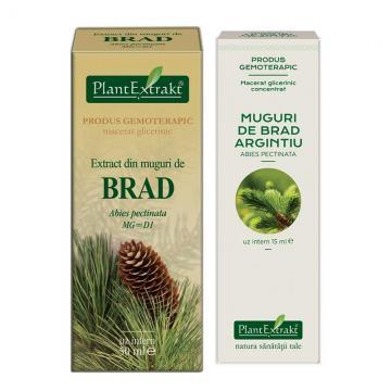 Extract Din Muguri De Brad  50 ml