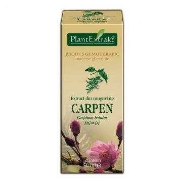 Extract Din Muguri De Carpen 50 ml