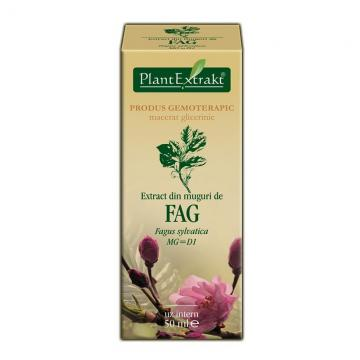 Extract Din Muguri De Fag 50 ml