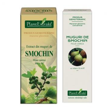Extract Din Muguri De Smochin 50 ml