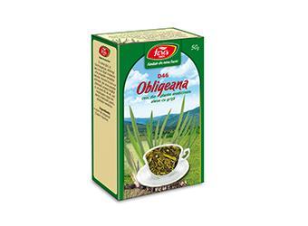 Obligeană, rizomi, D46, ceai la pungă