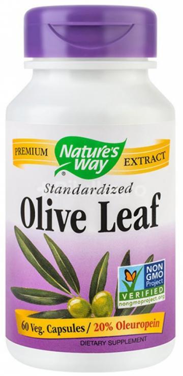 Olive Leaf 20% SE   60cps Vegetale