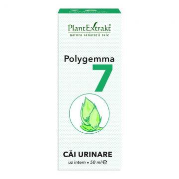 Polygemma 7 Căi Urinare 50 ml