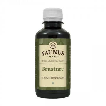 Tinctura Brusture 200ml