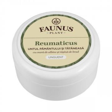 Unguent Reumaticus (Untul Pamantului si Tataneasa) 100ml