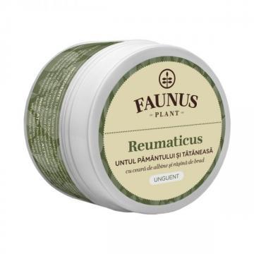 Unguent Reumaticus (Untul Pamantului si Tataneasa) 50ml